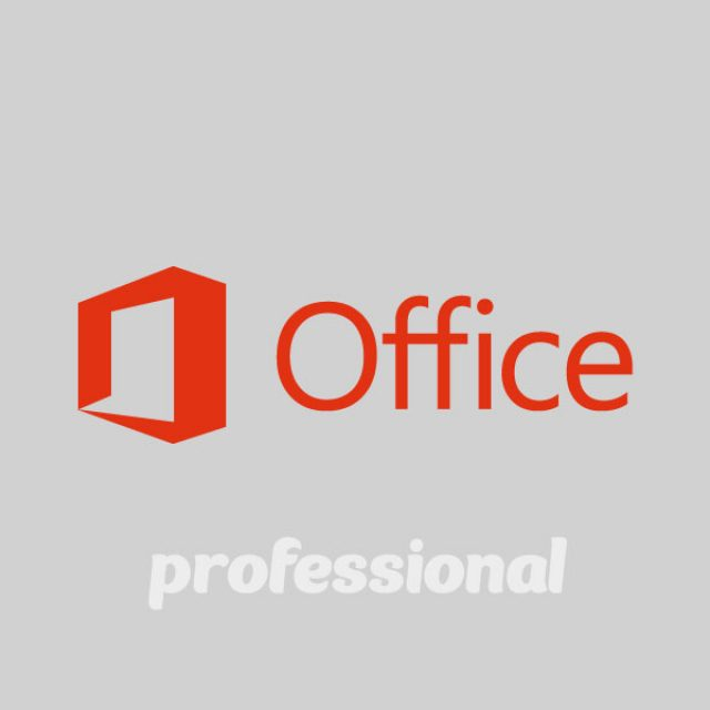Curso de Microsoft Office Professional